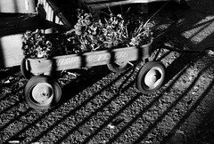 Radio Flyer (marq4porsche) Tags: canon vil r 50mm 14 ilford hp5 plus analog film black white bw bnw contrast light shadow radio flyer wagon bars