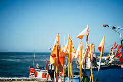 Visiting the fisherman of Vila Cha (Michael Moeller) Tags: travel porto summer portugal vilachã pt
