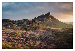 Sunrise in the valley of Ramshaw Rocks - in explore (Dave Fieldhouse Photography) Tags: peakdistrict peaks staffordshire staffordshiremoorlands staffordshirelife ramshawrocks theroaches nationalpark sunrise dawn summer landscape heather wildflower clouds rocks outcrop outdoors fuji fujifilm fujixt2 wwwdavefieldhousephotographycom grasses purple
