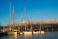 Morning light. Airlie Beach, Qld Australia (bdnils) Tags: sunrise queensland australia sailing yachts daybreak light morning
