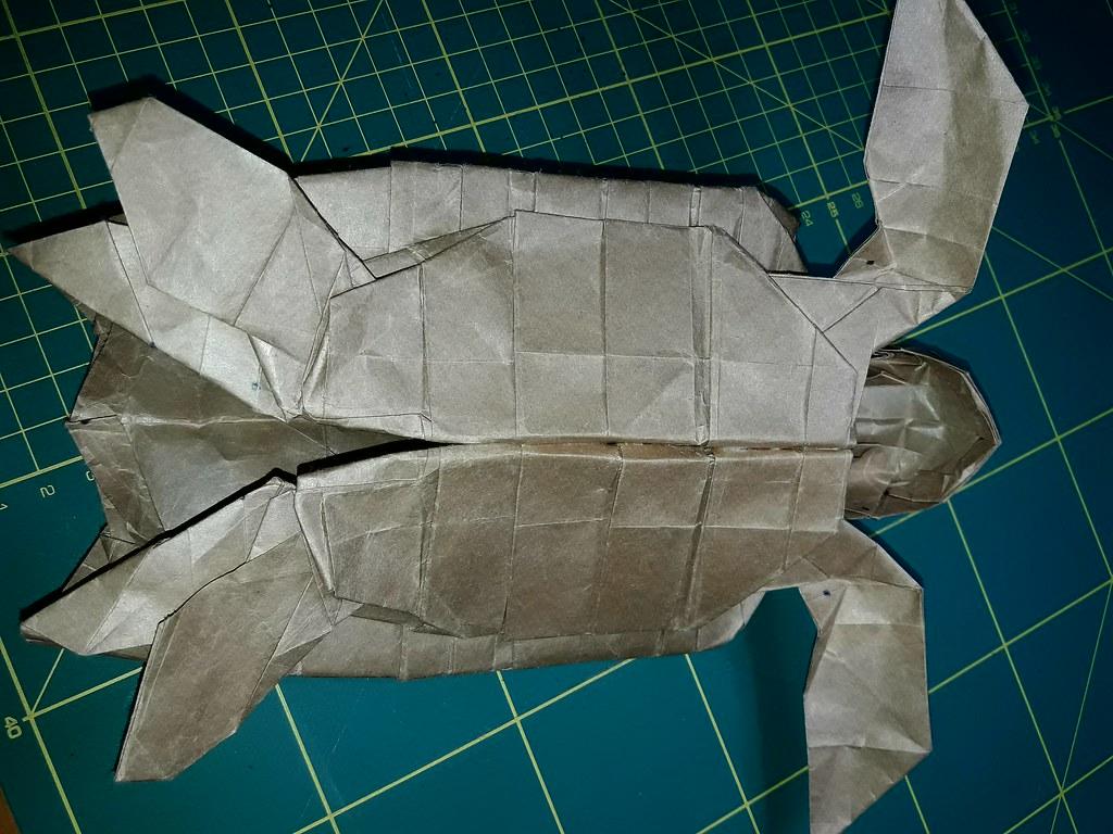 The worlds newest photos by kabayakawa flickr hive mind sea turtle kabayakawa tags jeuxipadfo Image collections
