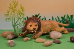 Zodiac (Helena Johansson 71) Tags: zodiac leo lion toy macromondays toyphotographer macro nikond5500 d5500 object nikon