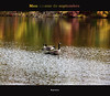 Pour qui ? Pour quoi ? (ByotA ....) Tags: autumn fall omar canoneosrebelt1i 2014 2017 recollections goose colors reflections september song dalida
