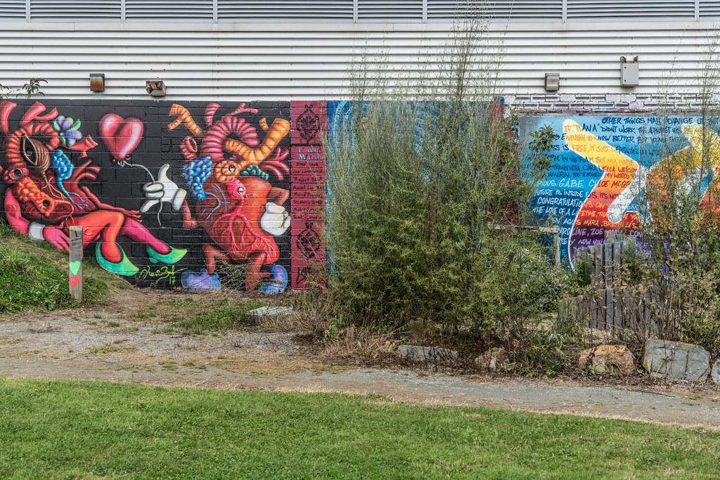 WATERFORD WALLS [AN ANNUAL INTERNATIONAL STREET ART FESTIVAL]-132275