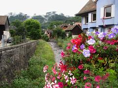 Fleurs dans la brume (RIch-ART In PIXELS) Tags: metzeral lesvosges alsace france canon flora flowers river water house mist fog