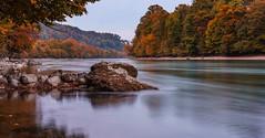Autumn river (M Lang) Tags: autumn aussicht landscape landschaft nature wasser switzerland gold landscapes swiss aare aarburg river forest outdoor aargau water fluss herbst wald olten solothurn schweiz ch