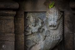   Thiyagaraja Swamy Temple   Thiruvarur   Tamil Nadu   (Ramesh M Photography) Tags: temple rameshmuthaiyan stonemadeart thiruvarur thyagarajatemplesouthindiantemple chola art sculpture thiyagarajaswamytempletiruvarur
