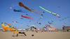 Kite Festival - Berck, France (pas le matin) Tags: beach place sand sable berck kite kitefestival cerfvolant travel voyage france world hautsdefrance nordpasdecalais canon 350d canon350d canoneos350d eos350d pieuvre octopus