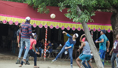 Sports - Volley Ball