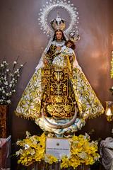 Nuestra Señora del Carmen (Fritz, MD) Tags: cofradiadeloshijosdemaria salvereginagrandmarianexhibit2017 grandmarianexhibit marianexhibit nuestraseñoradelcarmen nuestraseñoradelmontecarmelo