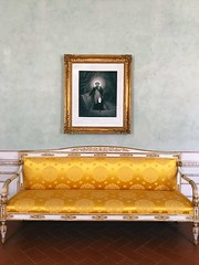 Napoleon's sofa No People Indoors  Architecture Taking Photos Museum Museum Of Art Architectural Column Architecture (volovivace) Tags: nopeople indoors architecture takingphotos museum museumofart architecturalcolumn