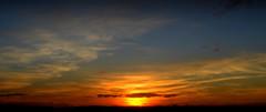 Entardecer (Eduardo Amorim) Tags: pôrdosol poente entardecer poniente atardecer sunset tramonto sonnenuntergang coucherdesoleil crepúsculo anoitecer pelotas costadoce riograndedosul brésil brasil sudamérica südamerika suramérica américadosul southamerica amériquedusud americameridionale américadelsur americadelsud brazil eduardoamorim