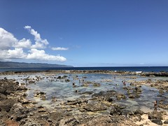North Shore (hawaii) Tags: northshore haleiwa oahu honolulu hawaii