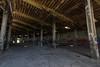 Abandoned Roundhouse 3 (-dangler) Tags: dandangler newyork wny westernnewyork ny abandoned roundhouse railroad manchester train rail old interior inside graffiti tagged dirty trespass