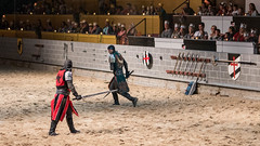 A wounded green knight. (kuntheaprum) Tags: medievaltimes dinnershow horse sword lance joust nikon d750 sigmaart 50mm f14