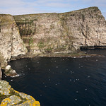 Isle of Noss, Shetland Islands thumbnail
