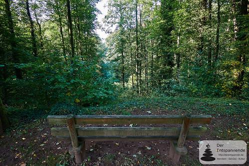 Aussicht von der Orangerie Schloss Karlsberg - vor 230 Jahren ohne Bäume