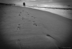 Walking Together. (Caminando juntos). (Samuel Santiago) Tags: beach sand footprints walking together blackandwhite monochrome canon5dmkii canonef1740mmf4l polarizer lightroomcc googlenikcollection myrtlebeachstatepark southcarolina