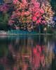 Crystal Lake Color (walter_g) Tags: canong9 rawtherapee53 gimp296 nikcolorefexpro