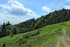 Mountain scenery near Rakhiv (Timon91) Tags: ukraine ukraina ucraina oekraïne oekraine ukrain україна украина mountains mountain hills carpathians karpaty karpaten карпати rakhiv rakhov рахів rachau rahó