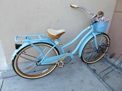 August 8: Blue Bike