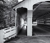 Through the bridge (Tim Ravenscroft) Tags: ashuelot coveredbridge newhampshire hasselblad x1d hasselbladx1d monochrome blackandwhite blackwhite