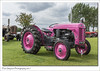 Charlie the pink Ferguson (Paul Simpson Photography) Tags: tractor pinktractor farm farming industry sonya77 paulsimpsonphotography lincolnshireshowground august2017 imagesof imageof farmmachinery transport grass engine ferguson