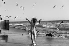 The charming of the seagulls (Luis Timoteo) Tags: charming seagulls mymuse nikon nikond750 tamron beach sea sand sunset sky littlekids lovely dancing teacher alone blackandwhite bw blackwhite beauty beautiful