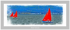 Red Sails (Oul Gundog) Tags: red sails boats sailing belfast lough water northern ireland co down ulster