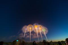 DSC02255 (ishizen) Tags: sony a7ii α7ii japan tokyo sel55f18z photo photoshoot photograph camera mirrorless zeiss hanabi 花火 山形 酒田 sakata yamagata firework sel1224g
