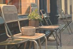 Sit down (sonia.sanre) Tags: utrecht netherlands night plant deco vintage calle street sienta sillas chairs chair seat sitdown