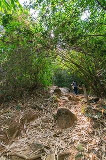 ramkhamhaeng national park - thailande 8