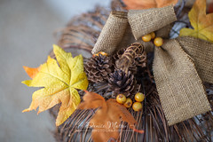 254/365 : Fall decor