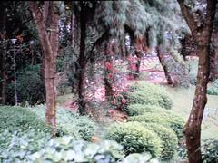 1994_Singapore_2016-07-18_Photo_018 (Matthias & Paula) Tags: singapore sentosa kuala lumpur malaysia cameron highlands zoo japanese gardens