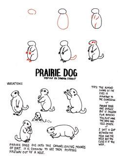 Prairie Dog Step-out