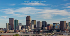 Cirrus Clouds Over the Denver Skyline (Bridget Calip - Alluring Images) Tags: 5280feetabovesealevel capitalcity cirrusclouds colorado coloradorockies coorsfield denverbroncos denverskyline frontrange milehicity milehighcity queencityoftheplains unitedstatescourthouse afternoonlight apartments baseballstadium blueskies construction constructionboom financialdistrict freeway glass landscape metal skyscrapers spring