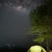 Manyara by night