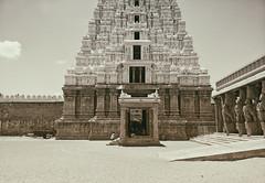 The white gopuram, a gal, few horses and an elephant. (Prabhu B Doss) Tags: prabhubdoss travelphotography srirangam sriranganathaswamytemple temple gopuram tower white whitegopuram legend tamilnadu india temples templearchitecture girl elephant blackandwhite monochromo