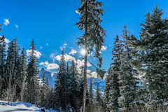 Beaming Sun (*Capture the Moment*) Tags: 2016 berge clouds farbdominanz gurnigel himmel lakethunersee landschaften mountains schnee schweiz sky snow sonya7m2 sonya7mii sonya7mark2 sonya7ii sonyfe2470mmf4zaoss switzerland thunersee wetter wolken blau blue