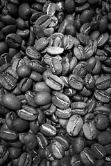 Avalanche (Ren-s) Tags: coffee beans grains café bokeh flou bnw bw black blackandwhite blackwhite white nb noiretblanc noirblanc noir blanc projet52 project52 project projet semaine33 week33 belgique belgium bruxelles brussels europe new 7dwf olympus olympusm1442mmf3556iir micro 43 coffeeshop organic biologique vegetal végétal food foodstuff foodmarket aliment alimentation contrast contraste em10