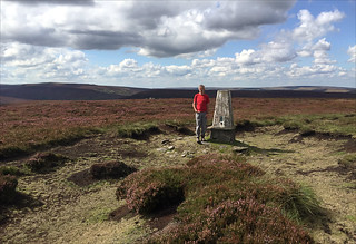 35 of 52 trig points