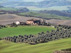 Toscane (Jolivillage) Tags: jolivillage landscape paesaggio toscane tuscany toscana italie italia italy europe europa geotagged picturesque arbres trees alberi oliviers maison house casa sienne siena