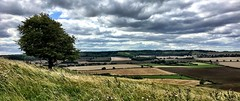 Whipsnade View (Deydodoe) Tags: cloud sky trees tree nature 2017 uk unitedkingdom greatbritain britain england panorama iphone northdowns downs countryside landscape zoo whipsnadezoo whipsnade