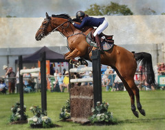 Showjumper 1S9A9797 (saundersfay) Tags: country show jumping raptors eagle peregrine side saddle horses ladies