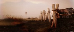 Exploring new horizons . . . (pt3) (Iris Okiddo) Tags: iris okiddo north fence landscape sign desolate country side