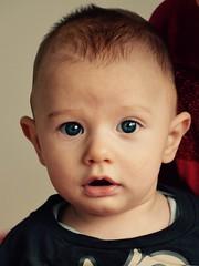 portrait de Marty à 5 mois