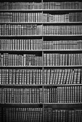 Secret Door (CoolMcFlash) Tags: books bnw blackandwhite blackwhite canon eos 60d lines nationalbibliothek vienna library bücher buch sw schwarzweis linien bw fotografie photography wien tamron a007 2470