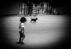 L'enfant et le petit chien / The child and the little dog (vedebe) Tags: humain people chiens animaux ville city rue urbain street noiretblanc netb nb bw monochrome jeux