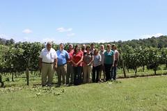 File337 (UGA CAES/Extension) Tags: grapes ugaextension cranecreekvineyards wine viticultureteam viticulture northgeorgiavineyards vineyards vines georgiawine uga