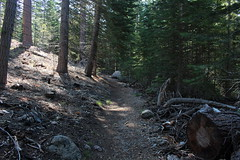 Trail alongside Manzanita Creek (in the shade to the right) (rozoneill) Tags: lassen volcanic national park chaos crags crag lake manzanita wilderness hiking california redding